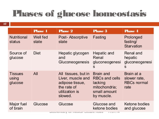 Fuel Metabolism with Fasting